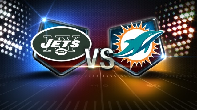 Image result for jets dolphins pics